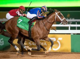 Maximum Security's hasn't raced since winning the $20 million Saudi Cup in late February. The 4-year-old standout colt returns to action July 18 at Del Marl. (Image: Jockey Club of Saudi Arabia)