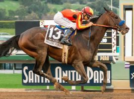 McKinzie, seen here winning the seven-furlong Malibu Stakes, will run the six-furlong Bing Crosby Stakes at Del Mar. It is the shortest race of his career. (Image: Benoit Photo)