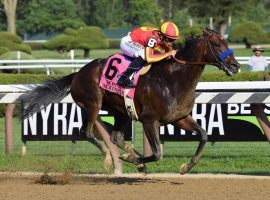 Because the horse bears the name of his late friend Brad McKinzie, Bob Baffert takes special pride when McKinzie wins races like last year's Whitney. He will be one to watch in Saturday's Met Mile at Belmont Park. (Image: NYRA Photo)