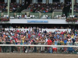 Because of the coronavirus, Monmouth Park won't have this many fans watching its biggest racing day of the summer. But the New Jersey track will play an active role in an international Pick 5 of all graded stakes races Saturday. (Image: Monmouth Park)