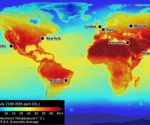 Globar Warming Betting