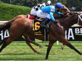 Starship Jubilee proved to bettors again why she is one of the best older turf mares in North America. She won Saturday's Ballston Spa Stakes at Saratoga, beating 2/5 favorite Sistercharlie. (Image: NYRA)