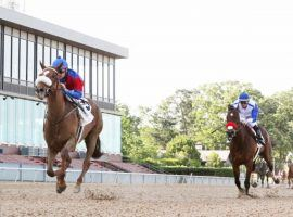 Swiss Skydiver exercised proper social distancing turning back Venetian Harbor in May's Fantasy Stakes. She is the 3/1 morning line favorite to beat the boys in the Blue Grass Stakes. (Image: Coady Photography)
