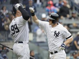 Aaron Judge and DJ LeMahieu celebrate a HR in Yankee Stadium last season. (Image: Julio Cortez/AP)