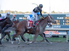 Irad Ortiz and 31/1 shot Math Wizard provided one of 2019's biggest racing upsets. He'll remain reigning Pennsylvania Derby champion for one more year. (Image: Barbara Weidl/EQUI-PHOTO)