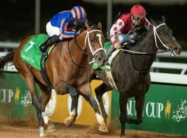 Maximum Security (7)  edged Midnight Bisou to win February's inaugural Saudi Cup. Only Midnight Bisou, however, received her purse winnings this week as Saudi officials investigate Maximum Security's former trainer. (Image: Edward Whitaker)