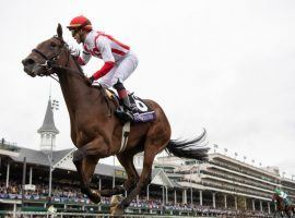 Newspaperofrecord won the Breeders' Cup Juvenile Fillies Turf at Churchill Downs two years ago. She returns to Churchill Downs as the expected favorite in the Grade 2 Distaff Turf Mile on Derby Saturday. (Image: Edward Whitaker)