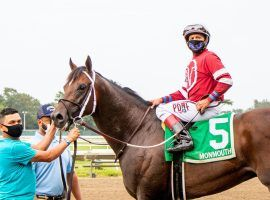 Pneumatic and jockey Joe Bravo easily captured the final Kentucky Derby points race -- the Pegasus Stakes. But they announced Monday they'll skip the Derby for the Preakness Stakes a month later. (Image: Eclipse Sportswire)