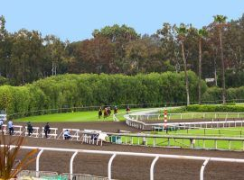 Horses prepare to tackle the 80-foot dirt crossing on Santa Anita Park's unique downhill turf course. That course may re-open as the track builds a new turf chute on the first turn. (Image: Santa Anita Park)