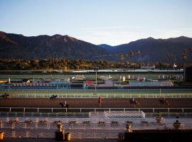 With the San Gabriels framing the track, horses go through their morning paces at Santa Anita Park. The Southern California track's fall season opens Sept. 19 -- one week earlier than usual. (Image: Jenna Schoenfeld/NY Times)