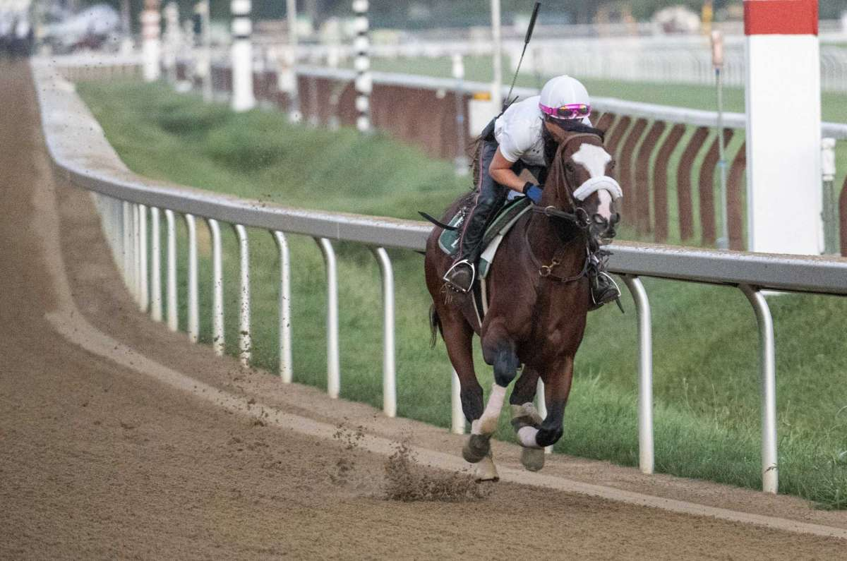 Tiz the Law-Travers Preview