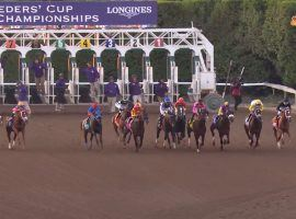 The start to the Breeders' Cup Classic is like watching an all-star race. This year's Preakness Stakes sends its winner to the $7 million Breeders' Cup Classic at Keeneland. (Image: Breeders' Cup World Championships)