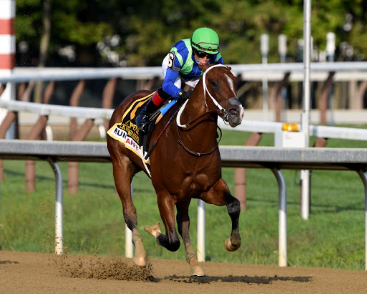 Jackie's Warrior-Top 2-Year-Olds