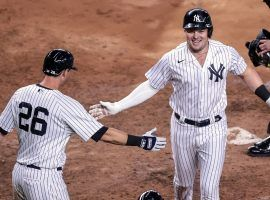 NY Yankees 2B DJ LeMahieu (26) congratulates Luke Voit on a home run at Yankee Stadium. (Image: Getty)