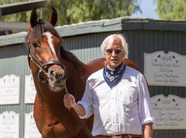 One of the most intimidating duos in Thoroughbred racing: Maximum Security and Bob Baffert. Maximum Security goes for his seventh consecutive win as the 3/5 favorite in the Awesome Again Stakes at Santa Anita Park. (Image: Benoit Photo)