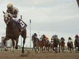 One-eyed Mighty Heart made his rivals see dirt en route to his dominant Queen's Plate victory. He is the 7/5 favorite for the Canadian Triple Crown's second leg -- the Prince of Wales Stakes. (Image: Michael Burns/Woodbine)