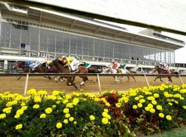 Jockeys hoping to experience the rush of a Preakness stretch run must undergo COVID-19 testing in Maryland no later than 72 hours before their first race Preakness weekend. (Image: Pimlico Race Course)