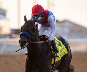 Princess Noor-Chandelier Stakes
