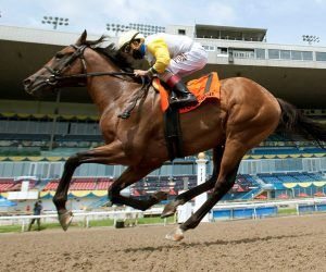 Shirl's Speight-Woodbine Mile