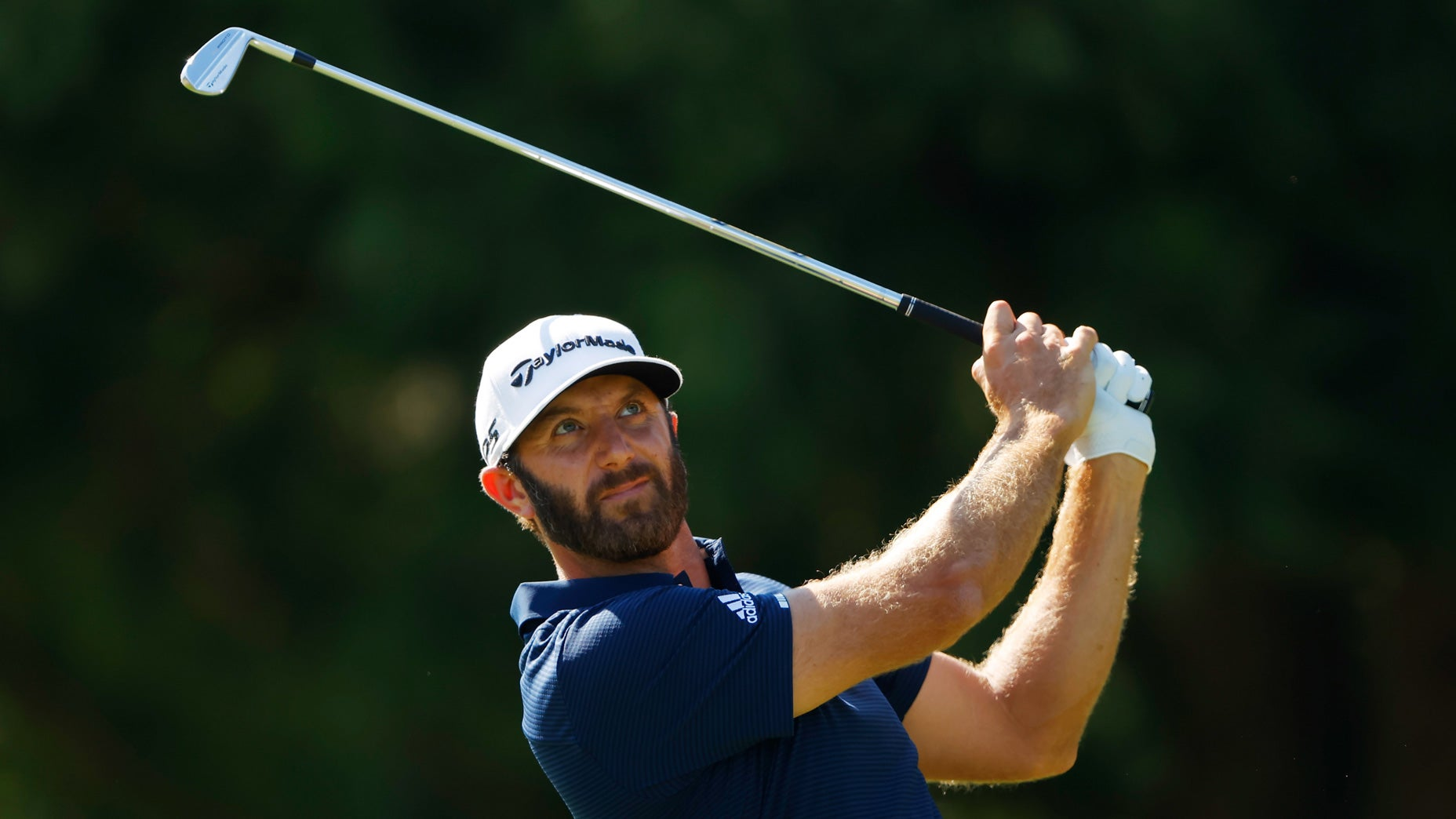 Dustin Johnson US Open odds