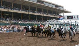 Del Mar lowered its Pick Six minimums for its Fall Meet that begins Oct. 31. (Image: Horsephotos/Getty)