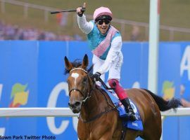 Frankie Dettori and Enable were No. 1 a remarkable 14 times in 17 races together. The star 6-year-old mare retired Monday. (Image: Sandown Park)
