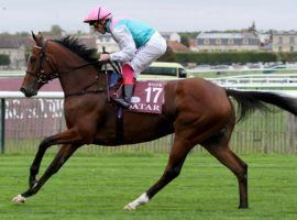 Enable used the September Stakes as a tune-up for her fourth consecutive Arc de Triomphe. She's going for her third victory in those four Sunday at ParisLongchamp. (Image: Eclipse Sportswire)