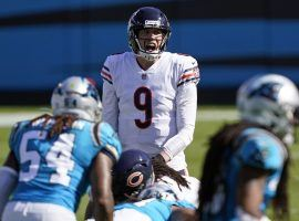 Chicago Bears QB Nick Foles surveys the defense against the Carolina Panthers. (Image: Brian Blanco/AP)