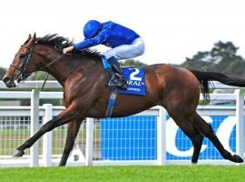 Ghaiyyath's 8 1/2-length beatdown of his rivals in February's Millennium Stakes was one of four 2020 victories. The No. 1-ranked turf horse in the world retired Monday. (Image: Godolphin)