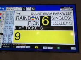 Going into Gulfstream Park West's ninth race Sunday, nine tickets were still live for the Rainbow 6. One ticket survived, good for nearly $250,000. (Image: @jasonblewitt30/Twitter)