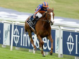 Love, seen here winning the Epsom Oaks in July, will likely race in America next. Trainer Aidan O'Brien scratched the standout 3-year-old filly from the Arc de Triomphe Thursday. (Image: Bill Selwyn/Reuters Pool)