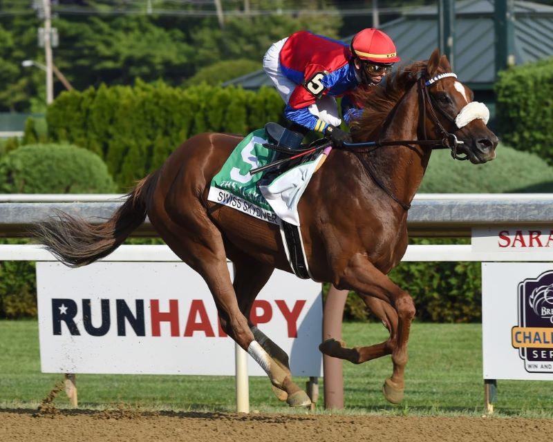 Swiss Skydiver-Preakness Preview