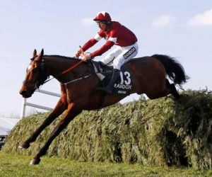 Tiger Roll-Flat Return