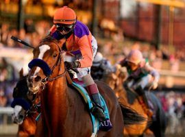 After Authentic and John Velazquez captured the Breeders' Cup Classic, the 3-year-old Kentucky Derby champion rides into retirement. He'll open the 2021 breeding season at Spendthrift Farm. (Image: Darron Cummings/AP)