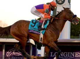 Authentic went gate-to-wire to win the Breeders' Cup Classic over an all-star field of Grade 1 stakes winners. (Image: AP Photo)