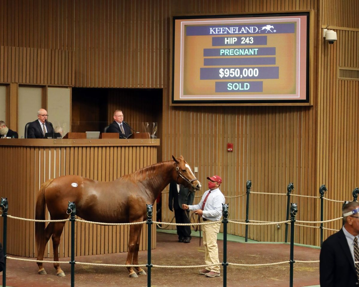 Expo Gold-Keeneland Sale