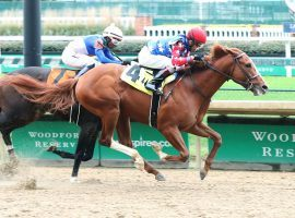 King Fury crowned himself victor in the Street Sense Stakes at Churchill Downs. He'll go for his third victory under the Twin Spires in Saturday's Grade 2 Kentucky Jockey Club. (Image: Coady Photography/Churchill Downs)
