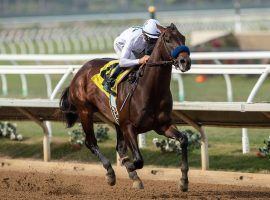 Life Is Good sprinted up the Kentucky Derby futures betting boards. His next test is likely at January's Sham Stakes at Santa Anita Park. (Image: Benoit Photo)