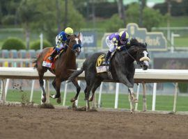 The 2020 Santa Anita Derby produced two of the top four Kentucky Derby finishers in Honor A.P. (right) and eventual Kentucky Derby winner Authentic. The 2021 Santa Anita Derby is one of 10 Grade 1 races on the Southern California track's 2020-21 winter/spring meet schedule. (Image: Benoit Photo/Associated Press