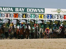 Tampa Bay Downs plans to allow spectators when its 2020-21 meet opens next week. (Image: Tampa Bay Times)