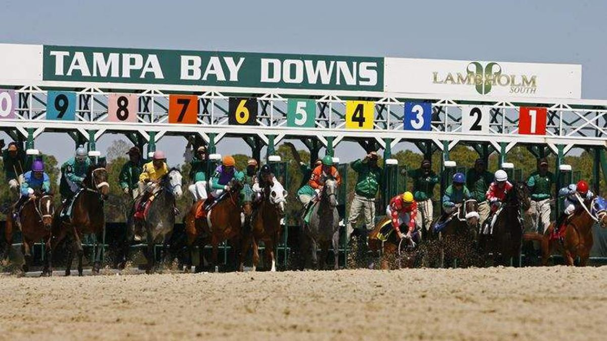 Tampa Bay Downs-Open to Fans