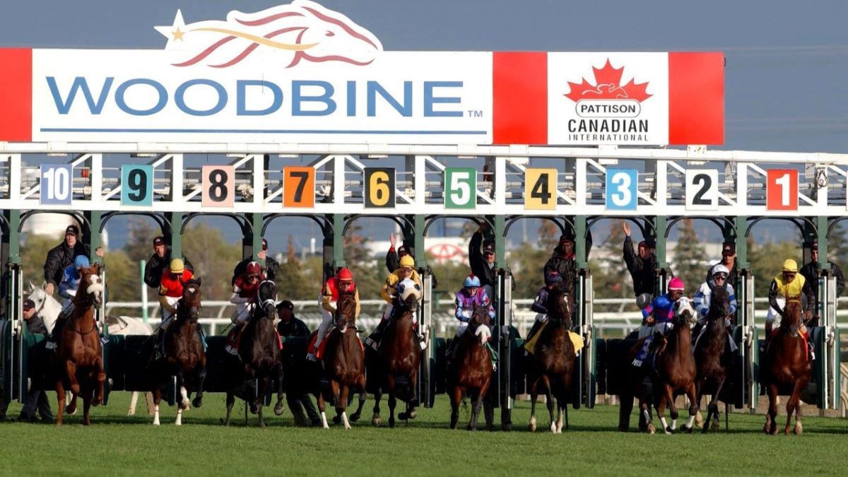 Canada woodbine horse racing betting odds football betting offers