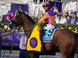 John Velazquez and Authentic sat atop the Thoroughbred world in 2020. The pair won the Breeders' Cup Classic, Kentucky Derby and three other races this year. (Image: Michael Conroy/Associated Press)