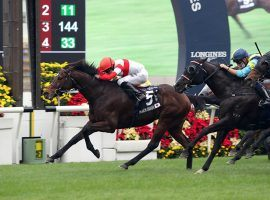 Ryan Moore and Danon Smash took the Hong Kong International Sprint by a half-length. That gave Moore the HKIR riding Grand Slam, victories in all four HKIR events. (Image: Hong Kong Jockey Club)