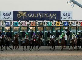 The $3 million Pegasus World Cup Invitational is one of 36 graded stakes on Gulfstream Park's 2020-21 Championship Meet schedule. The south Florida track opens its 84-day meet Wednesday. (Image: Getty)