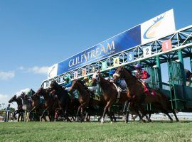 There's a good chance that Gulfstream Park races like this will start at or near post time. The Florida track wants to eliminate post-time drag -- starting races at or near schedule post times. (Image: Gulfstream Park)