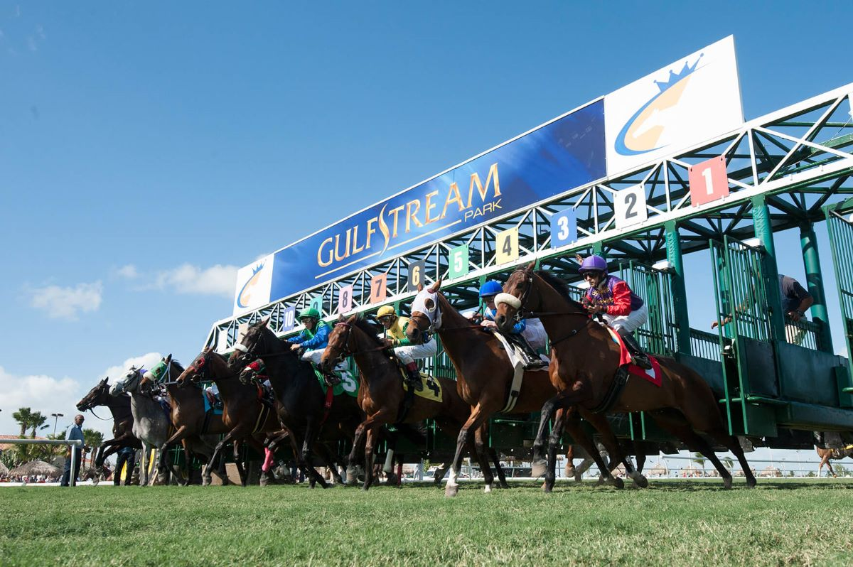 Gulfstream Park-Post Time Drag