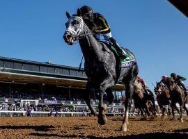 Knicks Go's record-setting win in the Breeders' Cup Dirt Mile marked one of November's racing highlights. Handle dipped slightly during the month year over year. (Image: Eclipse Sportswire)