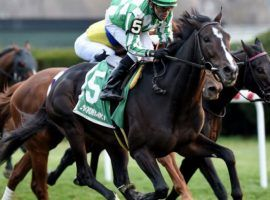 North Dakota's upset victory in the Red Smith Handicap came in a Grade 3 race. The Red Smith was one of three races promoted to Grade 2 status for 2021. (Image: Coglianese Photo)