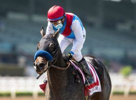 Princess Noor won two graded stakes races in her short career, including the Chandelier Stakes at Santa Anita Park. That career ended Saturday after the juvenile filly suffered an injury. (Image: Benoit Photo